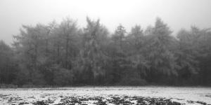 A cold winter